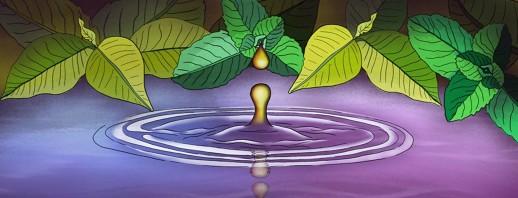 How I Use Aromatherapy To Improve My Mood image