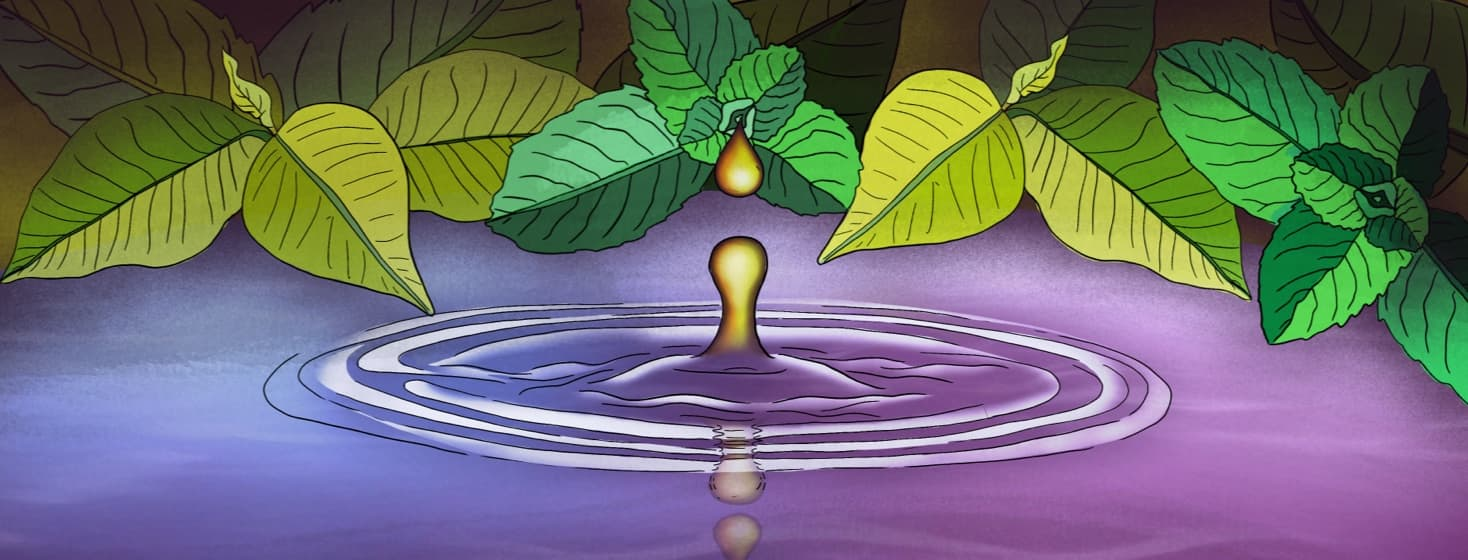 a drop of oil falling into water surrounded by leaves